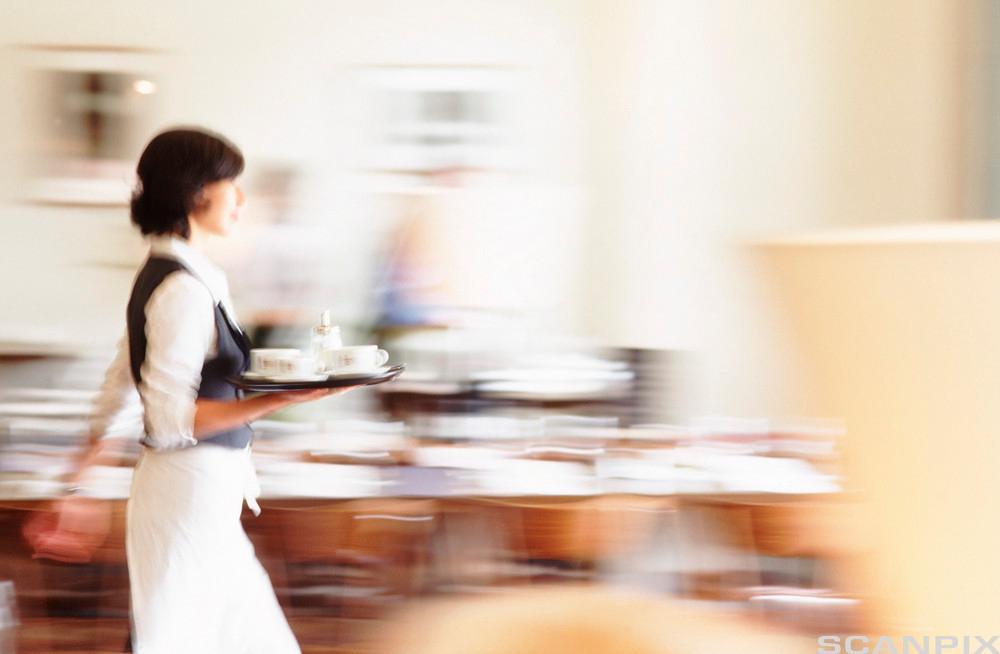 Travel servitør på kafé. Foto.