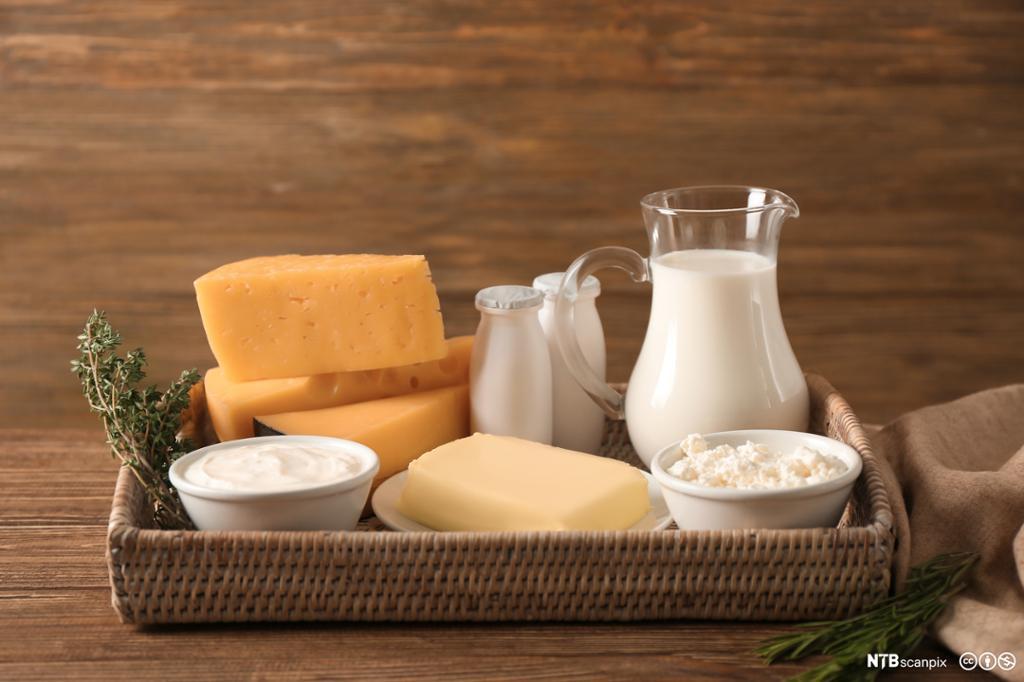 Ulike, færske melkeprodukter på et serveringsfat. foto.