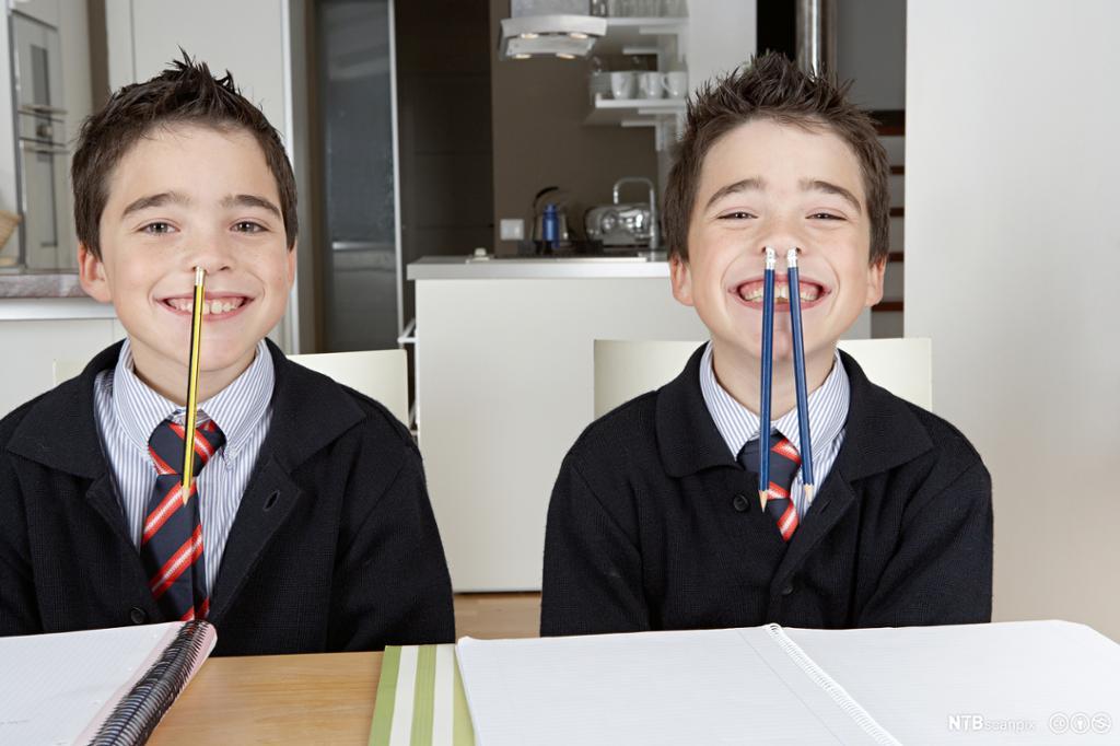 Eneggede tvillinger i skoleuniform gjør lekser. Foto