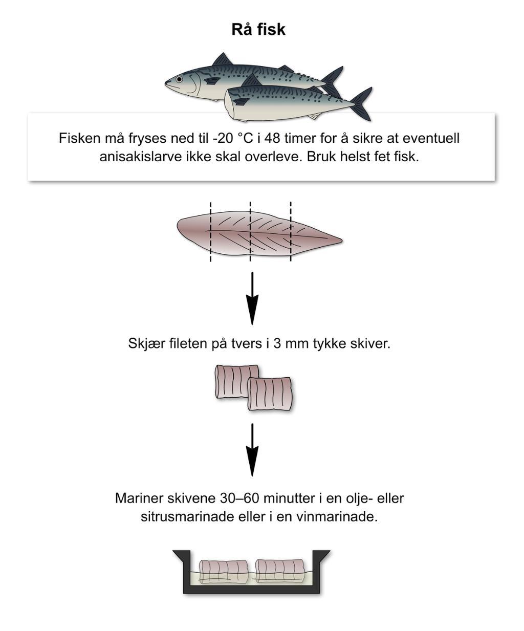 Rå fisk