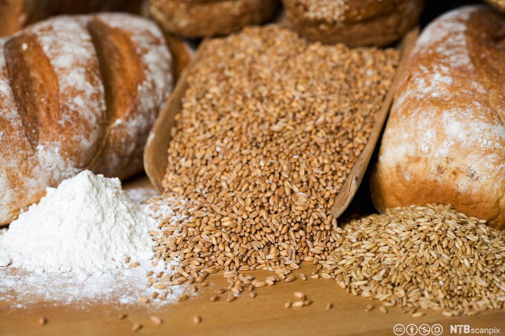 Eit par brød, korn og mjøl på ein benk. Foto.
