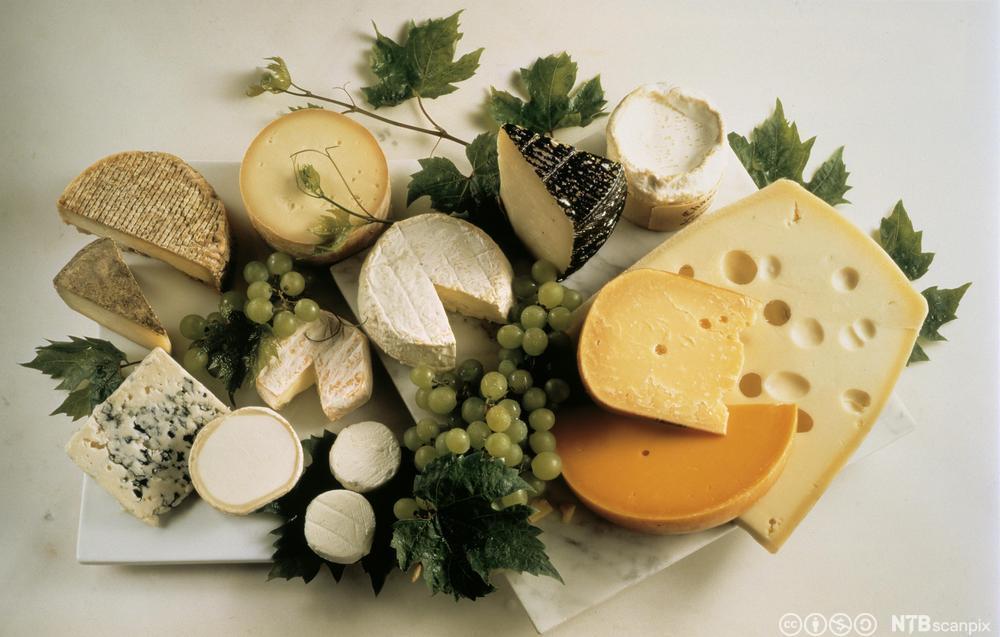 Ulike typar ost på eit bord. Foto.