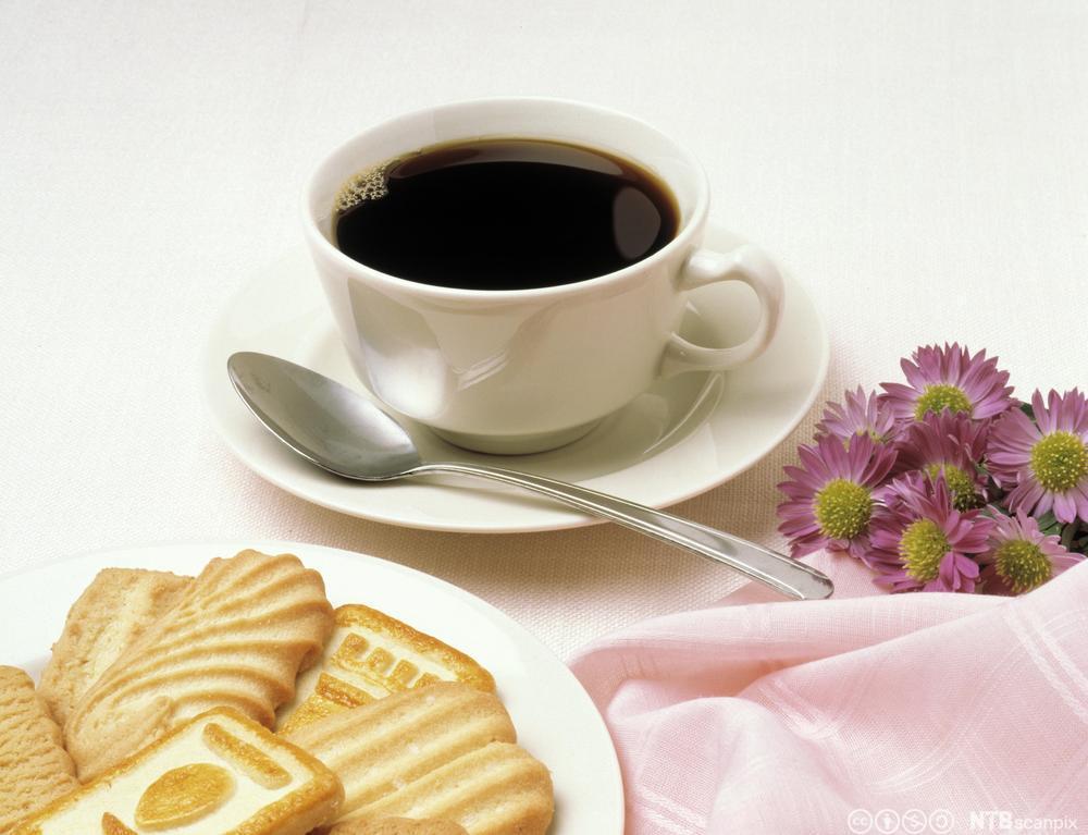 En kopp kaffe med kjeks ved siden av. Foto.
