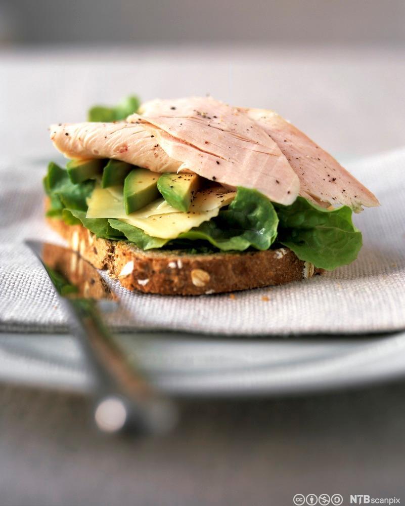 Sandwich med kalkunpålegg. Foto.