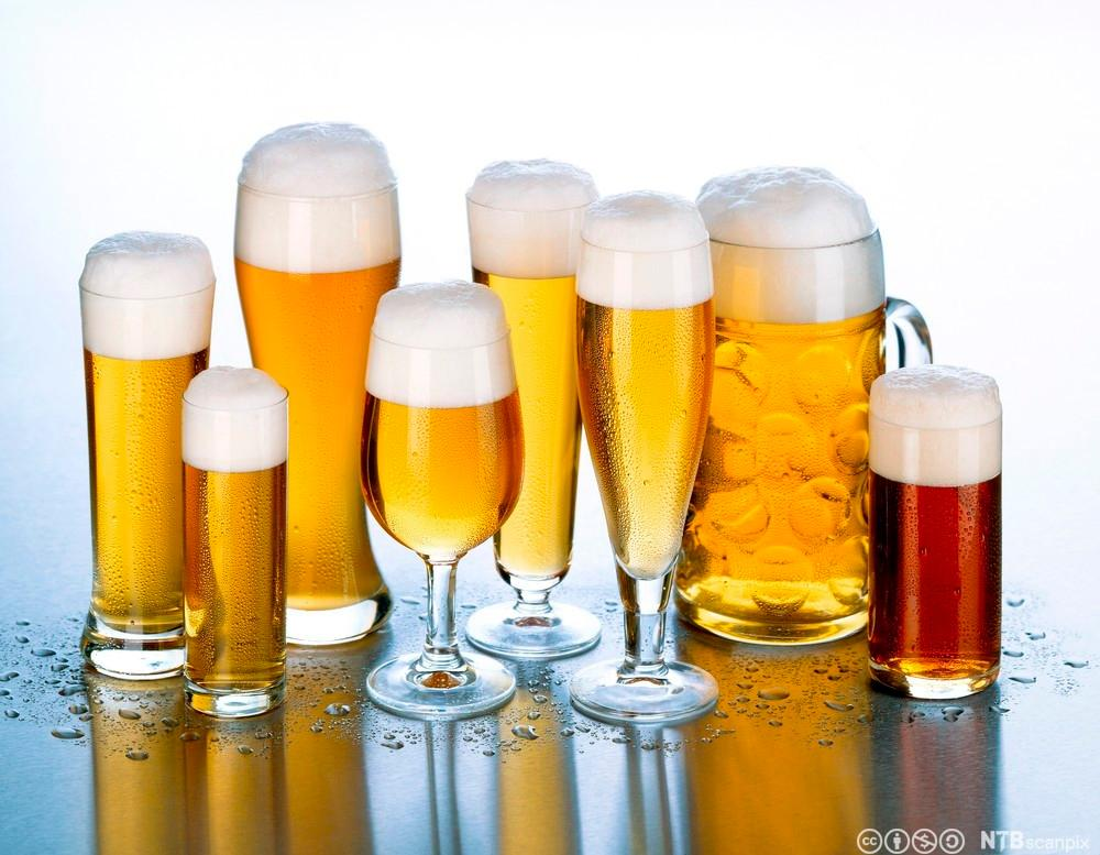 Ulike typer øl i glass. Foto.