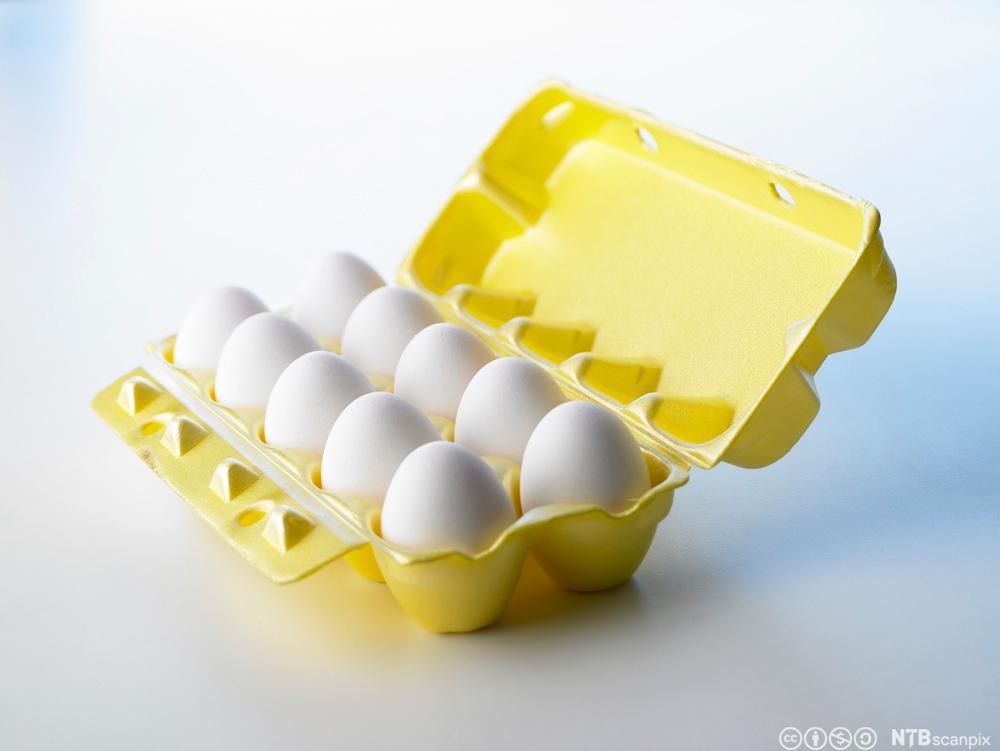 Ein opna eggekartong med egg. Foto.