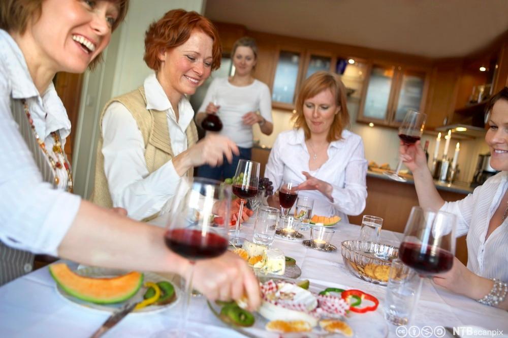 Middagsselskap med venner