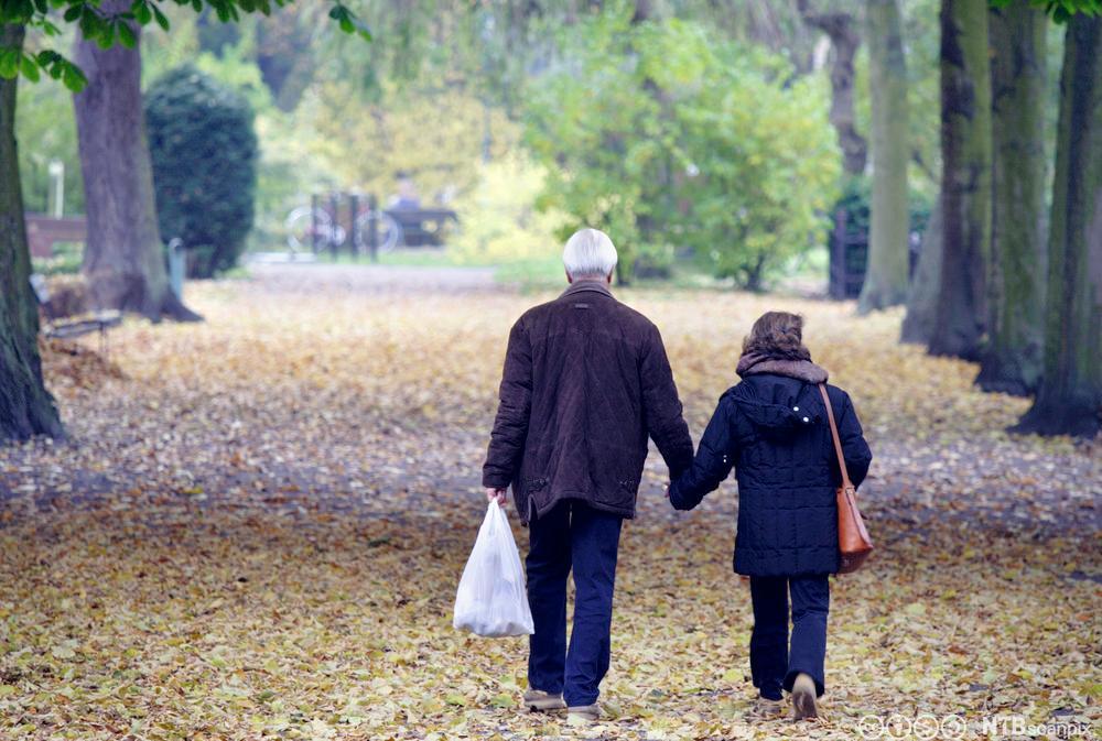 Eldre ektepar går tur i parken. Foto.