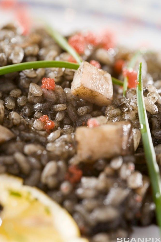 Svartrisrisotto med blekksprut. Foto.