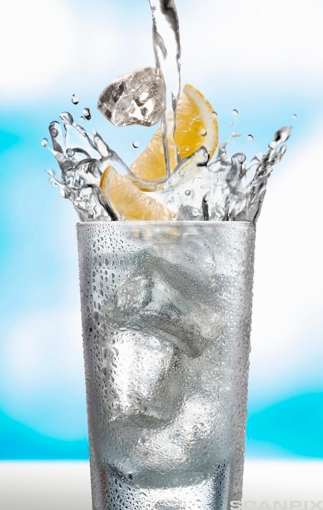 Eit glas vatn med isbitar og sitron. Foto.