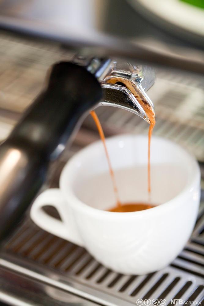 Kopp som fylles med espresso. Foto.