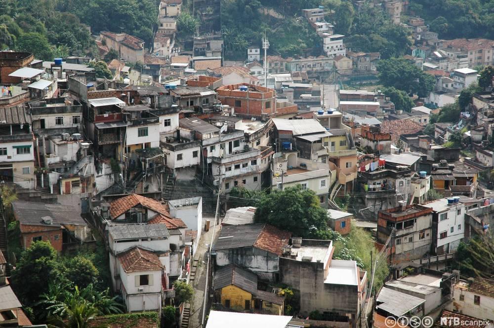 Favela i Rio de Janerio, Brasil. Foto.
