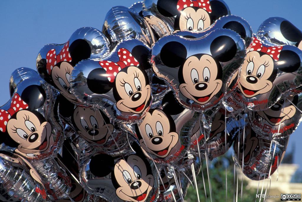 Ballonger med Mikke og Minni Mus. Foto.