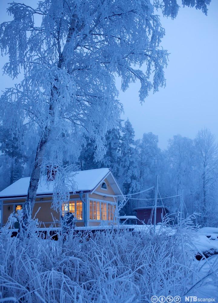 Hus i vinterlandskap. Foto.