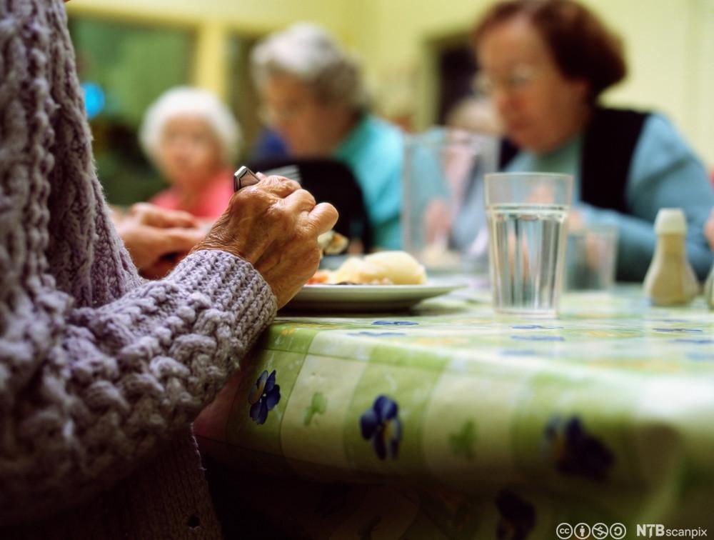 Eldre som spiser middag. Foto.