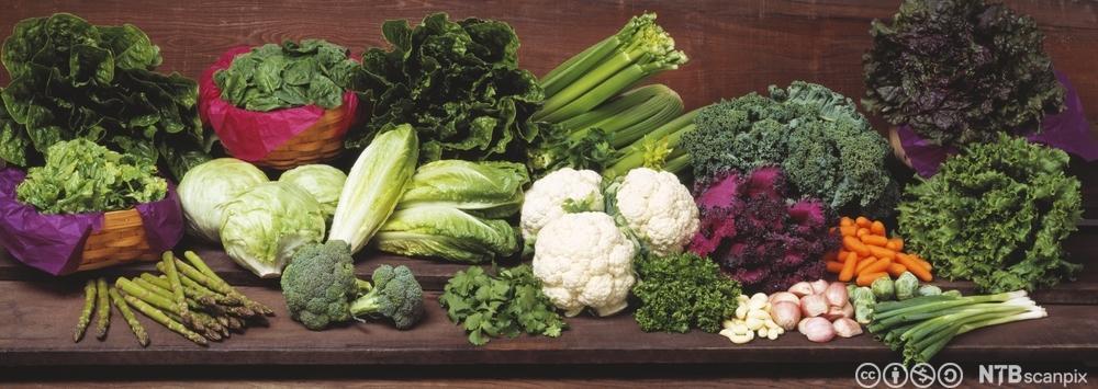 Assorterte grønsaker på ein benk. Foto.