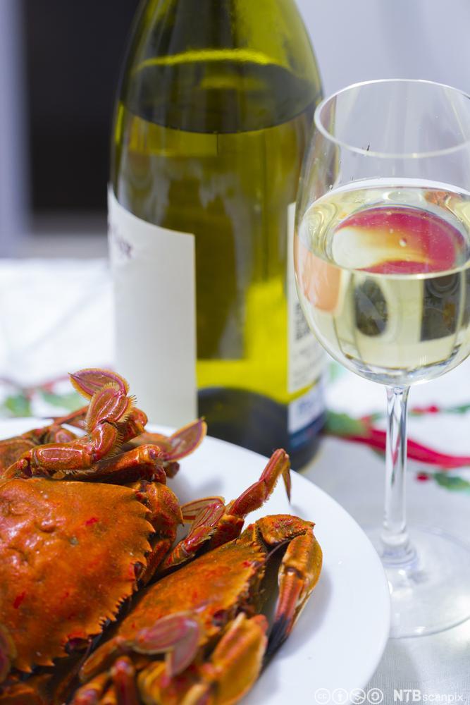 Kokt krabbe på en tallerken og et glass hvitvin. Foto.