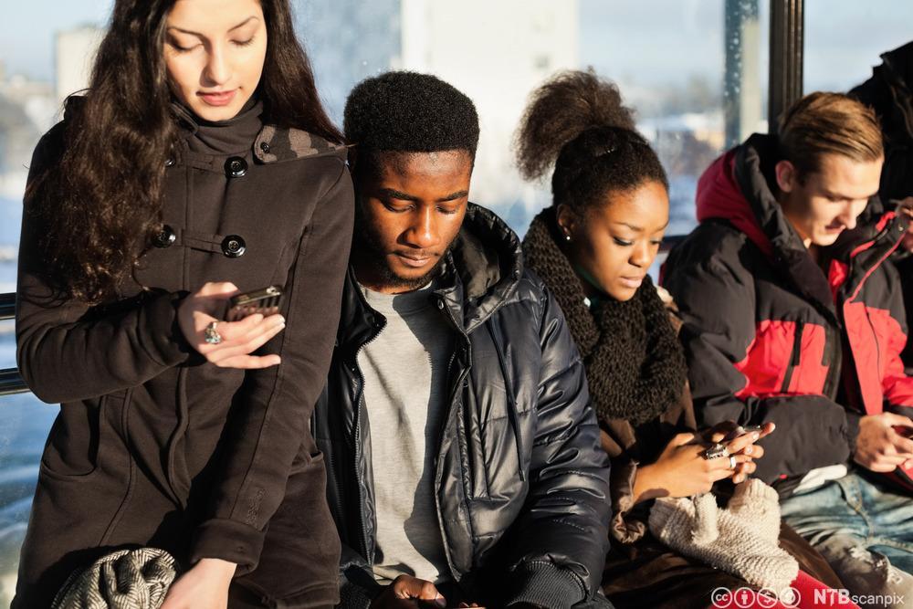 Ungdommer som er opptatt med hver sin mobiltelefon. Fotografi.