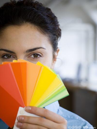 Profesjonell kommunikasjon om farger og ulike fargesystem