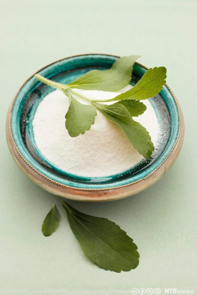 Ein kopp med kunstig stevia og blad frå planten som ligg på toppen. Foto.