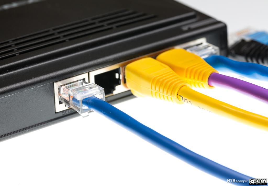 Cat5-kabler og ruter. Foto.