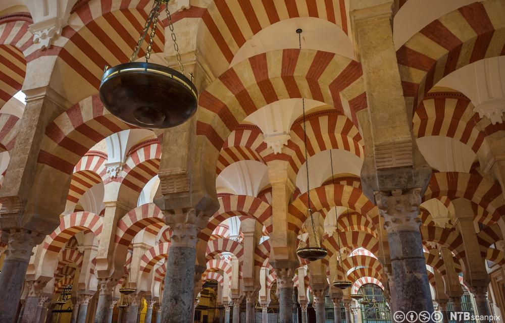 Interiør i moské-katedralen, La Mezquita, i Córdoba, Spania. Foto.