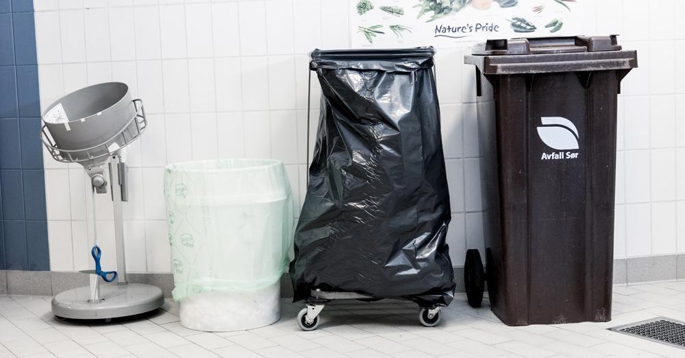 Forskjellige søppeldunker. Foto.