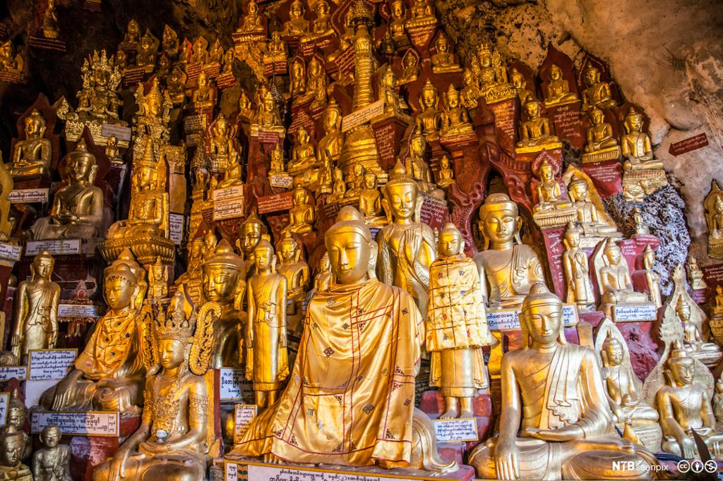 Et stort antall buddhastatuer i gull er oppstilt i en fjellvegg. Foto.