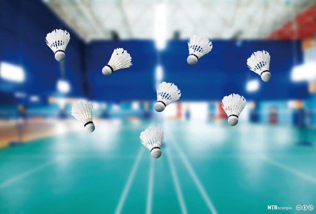Badmintonballer på badmintonbane. Foto.