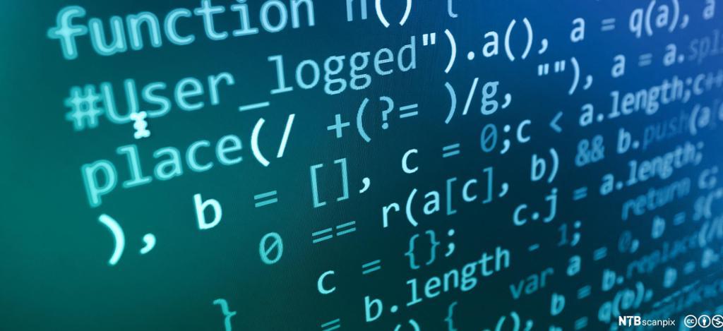 Dataskjerm med programmeringsspråk. Foto.