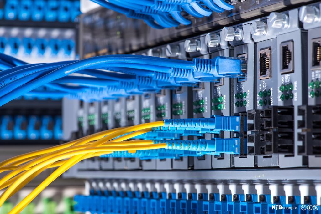 Fiberoptisk tilkobling på nettverk. Foto.