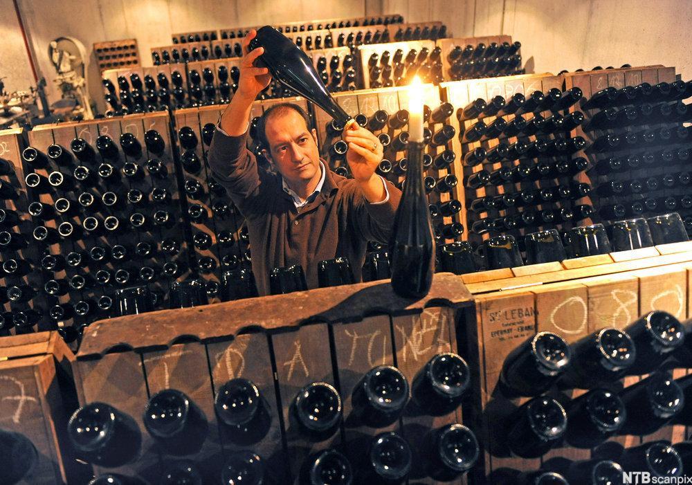 Kontroll av musserende vin på Wackerbarth slott. Foto.
