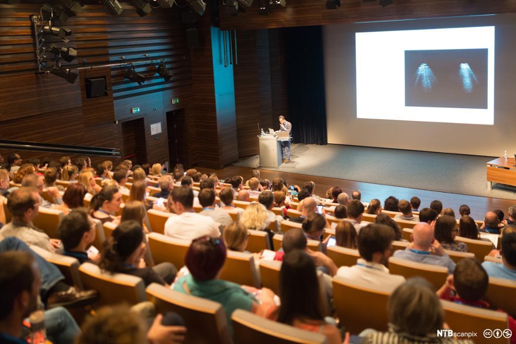 Publikum på konferanse. Foto.