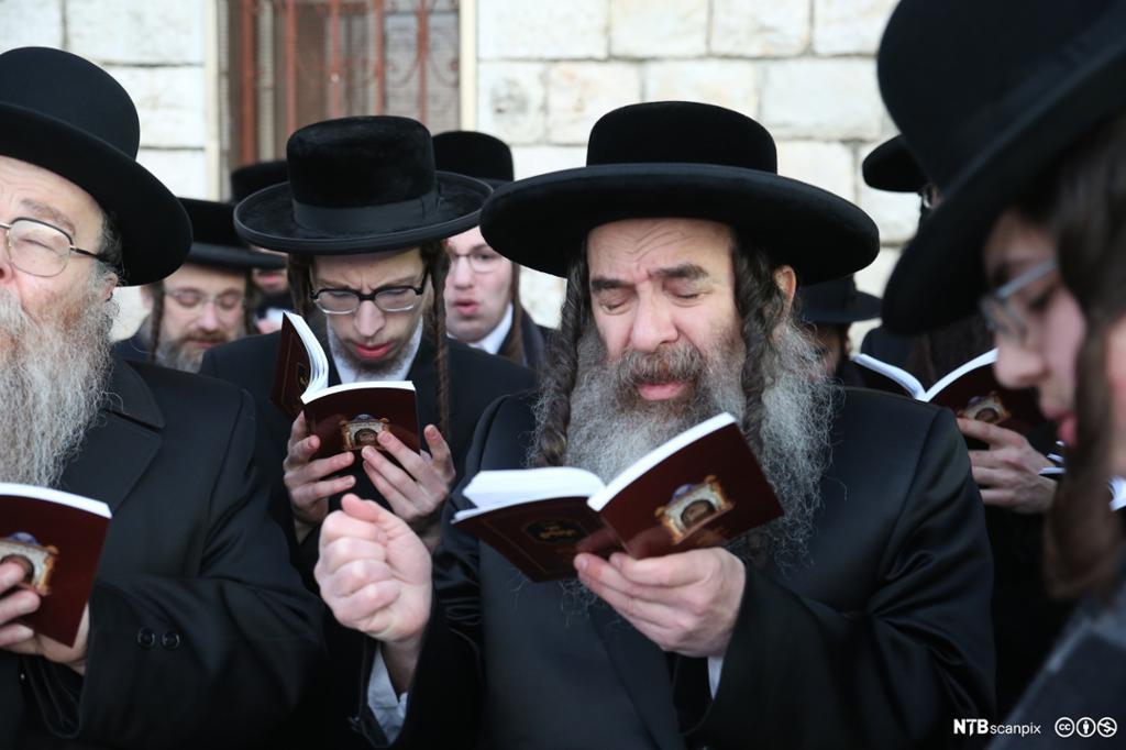 En gruppe menn med svarte hatter og hengekrøller so leser i bøker. Foto