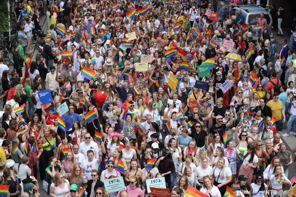 Mange mennesker går i tog med plakater og regnbueflagg. Foto.