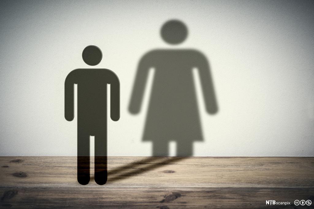 En mann med en kvinneskygge.