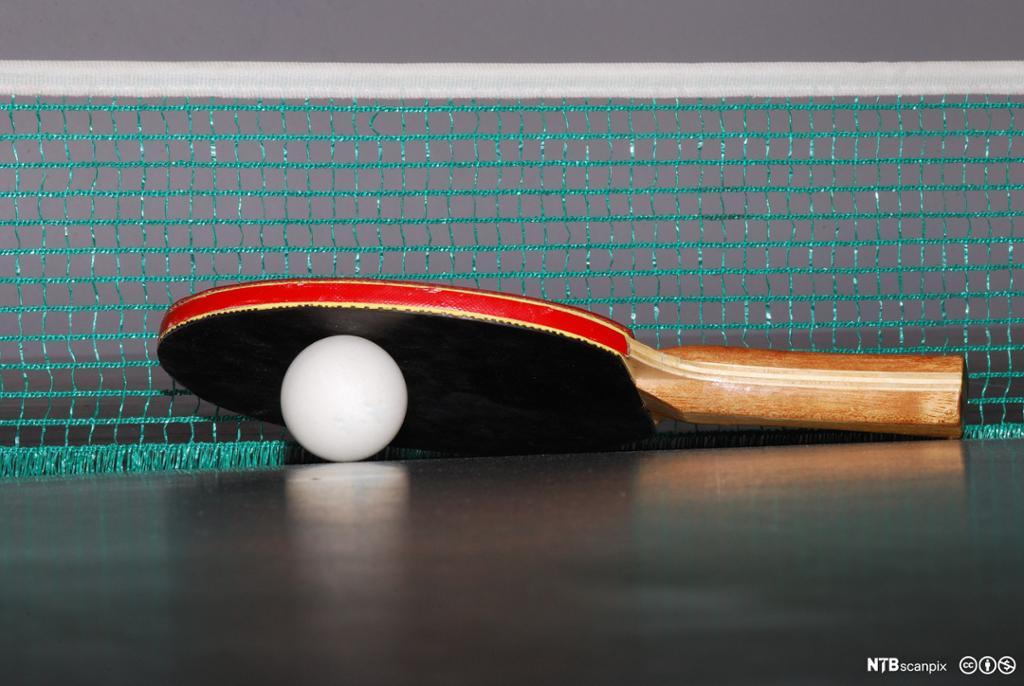 Nærbilde av bordtennisrekkert og bordtennisball. Foto.