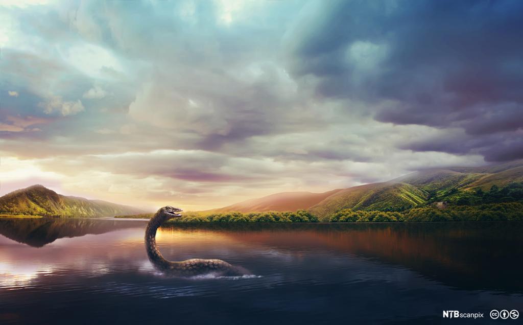 En sjøorm stikker hodet opp av vannet i en innsjø. Illustrasjon.