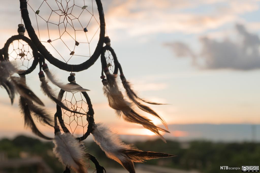 En sirkel med tråder i spindelvev og fjær som blafrer i vinden. Foto.