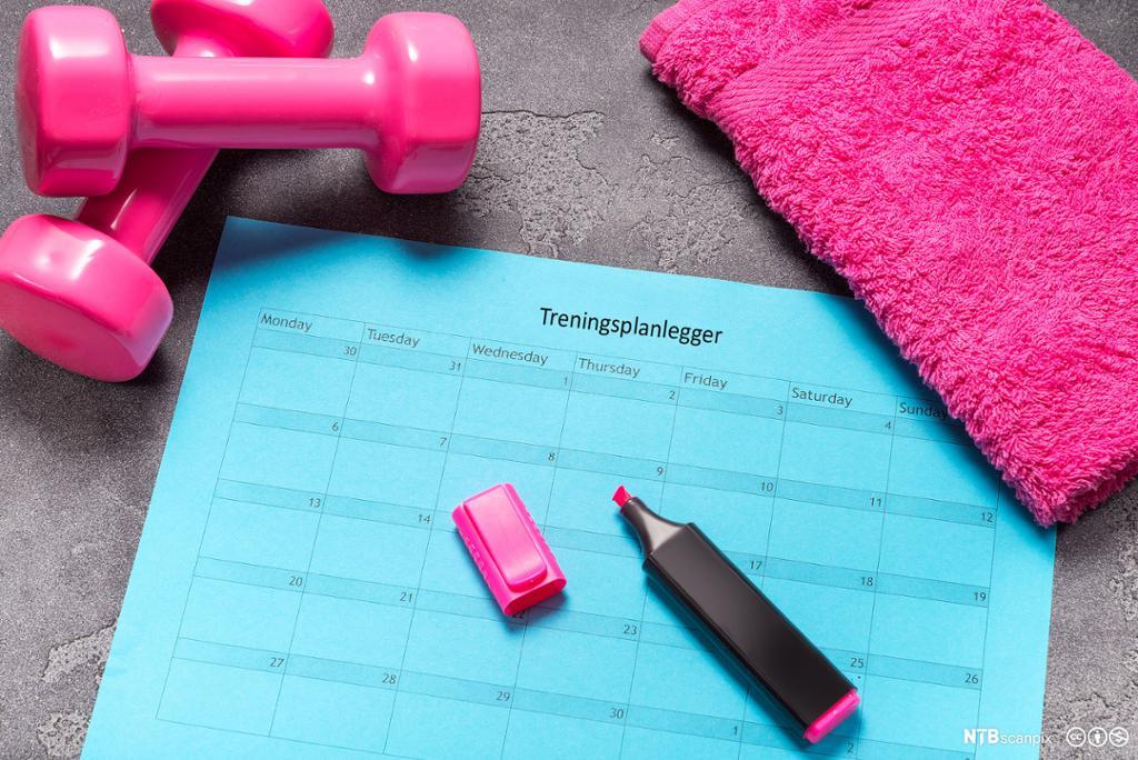 Kalender for planlegging av trening. Foto.