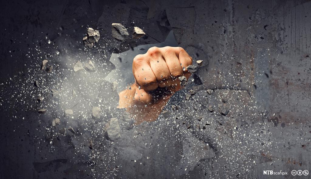 Knyttneve bryter gjennom veggen med makt. Foto.
