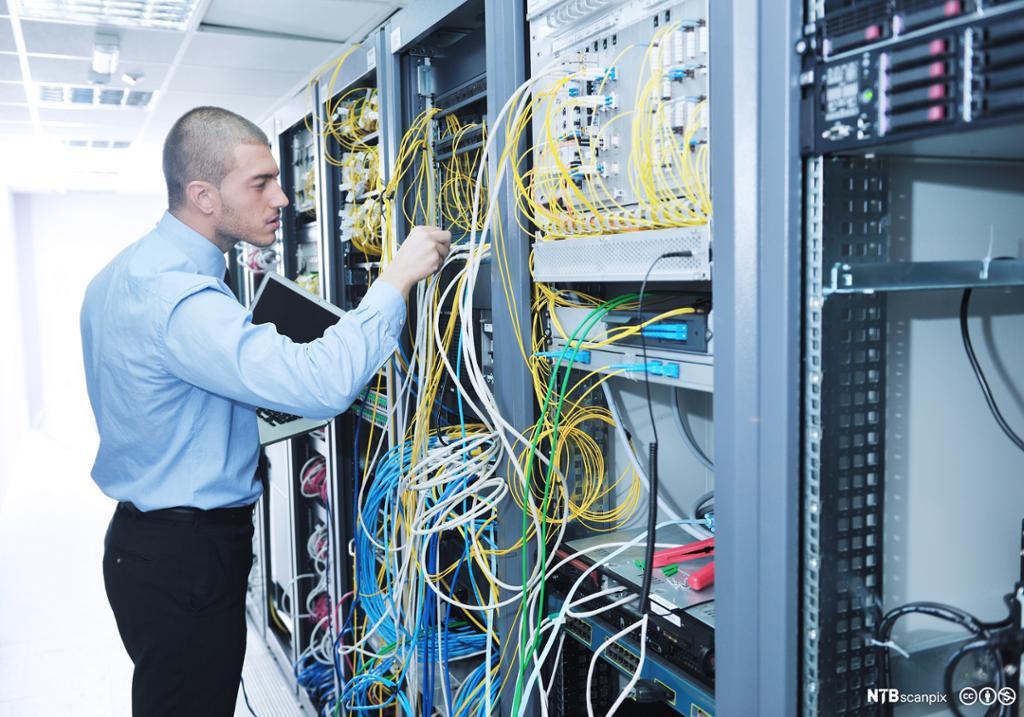 Ung ingeniør som prøver å finne riktig kabel i et rotete nettverksskap. Foto.