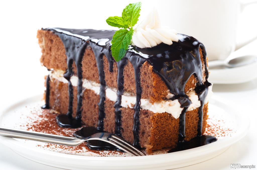 Eit stykkje sjokoladekake. Foto.
