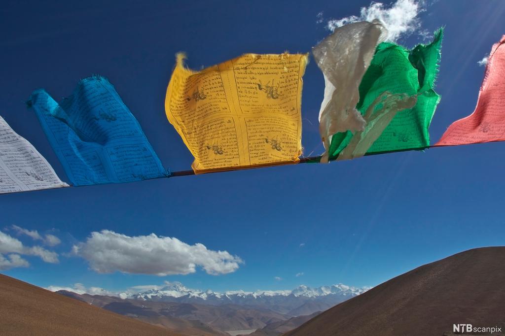 Flagg i ulike farger med skrift på blafrer i vinden. Fjell og blå himmel i bakgrunnen. Foto.