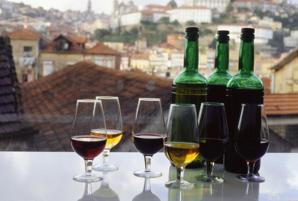 Flasker og glass med portvin. foto.