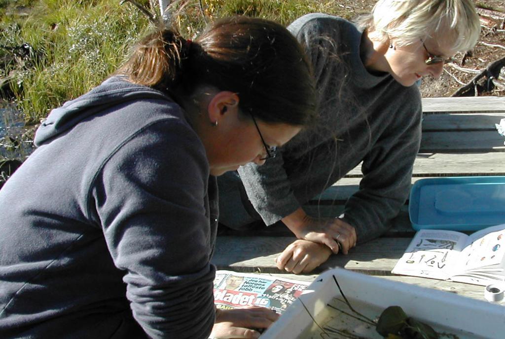 To personer bruker oppslagsverk på feltarbeid. Foto.
