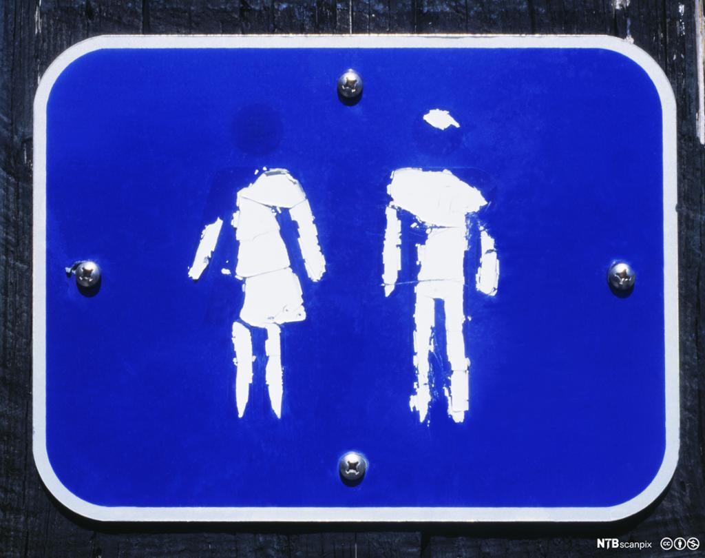 En illustrasjon av en kvinne - og mannsskikkelse