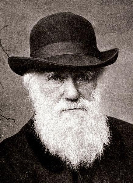 Portrettbilde av Charles Darwin. Foto