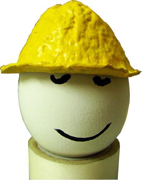 Egg med hjelm på. Foto.