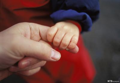 En liten barnehånd holder rundt pekefingeren til en voksen. Foto.